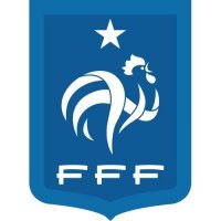 France Football Confederation Light Iron-on Stickers (Heat Transfers)