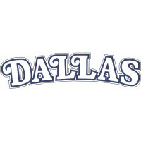 Dallas Mavericks Script Logo  Light Iron-on Stickers (Heat Transfers) version 2