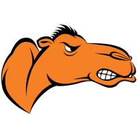Campbell Fighting Camels 2005-Pres Partial Logo Light Iron-on Stickers (Heat Transfers)