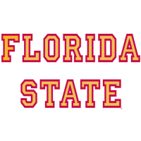Florida State Seminoles 1976-Pres Wordmark Logo Light Iron-on Stickers (Heat Transfers)
