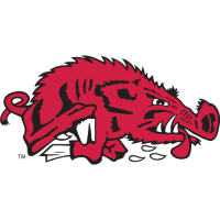 Arkansas Razorbacks 1976-1993 Alternate Logo Light Iron-on Stickers (Heat Transfers)