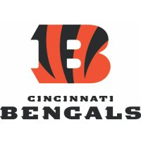 Cincinnati Bengals Alternate Logo  Light Iron-on Stickers (Heat Transfers) version 3
