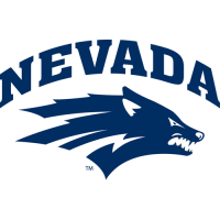 2008-Pres Nevada Wolf Pack Primary Logo Light Iron-on Stickers (Heat Transfers)