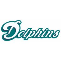 Miami Dolphins Script Logo  Light Iron-on Stickers (Heat Transfers) version 3