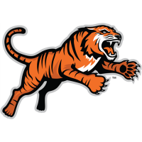RIT Tigers 2004-Pres Alternate Logo Light Iron-on Stickers (Heat Transfers)