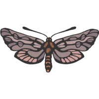 Butterfly Light Iron On Stickers (Heat Transfers) version 14