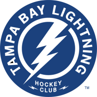 Tampa Bay Lightning 2011 12-Pres Secondary Logo Light Iron-on Stickers (Heat Transfers)