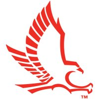 Hartford Hawks 1984-Pres Secondary Logo Light Iron-on Stickers (Heat Transfers)
