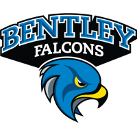 Bentley Falcons 2013-Pres Secondary Logo Light Iron-on Stickers (Heat Transfers)