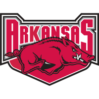 Arkansas Razorbacks 2001-2008 Alternate Logo Light Iron-on Stickers (Heat Transfers)