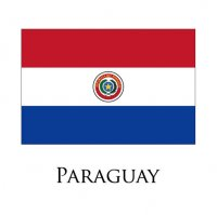 PARAGUAY Flags light iron ons