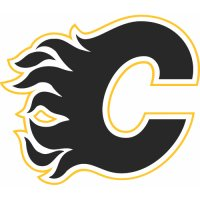 Calgary Flames Alternate Logo  Light Iron-on Stickers (Heat Transfers)