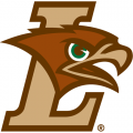 2004-Pres Lehigh Mountain Hawks Primary Logo Light Iron-on Stickers (Heat Transfers)