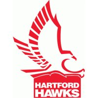 Hartford Hawks 1984-Pres Primary Logo Light Iron-on Stickers (Heat Transfers)