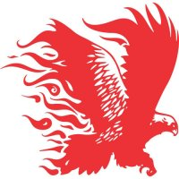 Eagle Flames light-colored apparel iron on stickers version 11