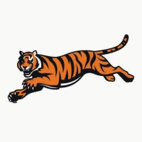 Cincinnati Bengals Alternate Logo  Light Iron-on Stickers (Heat Transfers) version 1