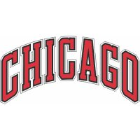 Chicago Bulls Script Logo  Light Iron-on Stickers (Heat Transfers)