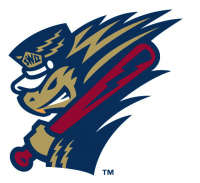 ScrantonWilkes-Barre RailRiders alternate logo(2013-pres) Light Iron-on Stickers (Heat Transfers) 04