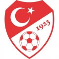 Turkey Football Confederation Light Iron-on Stickers (Heat Transfers)