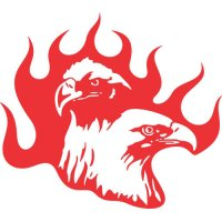 Eagle Flames light-colored apparel iron on stickers version 7