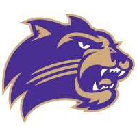 2008-Pres Western Carolina Catamounts Primary Logo Light Iron-on Stickers (Heat Transfers)