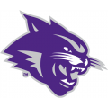 Abilene Christian Wildcats 2013-Pres Partial Logo Light Iron-on Stickers (Heat Transfers)