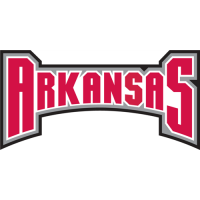 Arkansas Razorbacks 2001-2008 Wordmark Logo1 Light Iron-on Stickers (Heat Transfers)