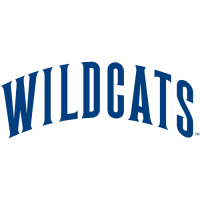 1991-Pres Villanova Wildcats Wordmark Logo Light Iron-on Stickers (Heat Transfers)