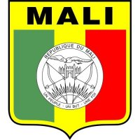 Mali Football Confederation Light Iron-on Stickers (Heat Transfers)