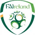 Ireland Football Confederation Light Iron-on Stickers (Heat Transfers)