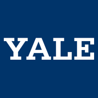 0-Pres Yale Bulldogs Wordmark Logo Light Iron-on Stickers (Heat Transfers)
