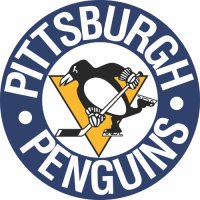 Pittsburgh Penguins Primary Logo  Light Iron-on Stickers (Heat Transfers)