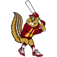 1986-Pres Minnesota Golden Gophers Mascot Logo Light Iron-on Stickers (Heat Transfers) 6