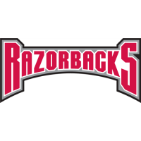 Arkansas Razorbacks 2001-2008 Wordmark Logo4 Light Iron-on Stickers (Heat Transfers)