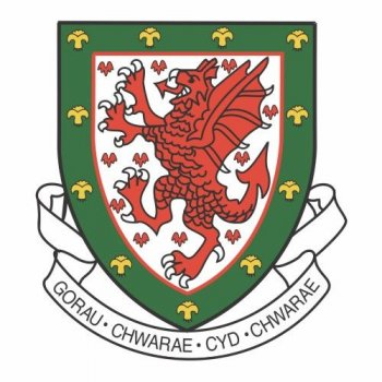Wales Football Confederation Light Iron-on Stickers (Heat Transfers)