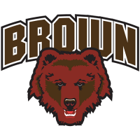 Brown Bears 2003-Pres Primary Logo Light Iron-on Stickers (Heat Transfers)