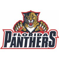 Florida Panthers Script Logo  Light Iron-on Stickers (Heat Transfers)
