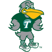1998-Pres Tulane Green Wave Mascot Logo Light Iron-on Stickers (Heat Transfers)