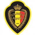 Belgium Football Confederation Light Iron-on Stickers (Heat Transfers)