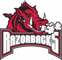 Arkansas Razorbacks 2001-2008 Alternate Logo2 Light Iron-on Stickers (Heat Transfers)