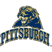 2005-Pres Pittsburgh Panthers Secondary Logo Light Iron-on Stickers (Heat Transfers)