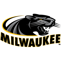 2011-Pres Wisconsin-Milwaukee Panthers Primary Logo Light Iron-on Stickers (Heat Transfers)