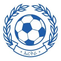 Eritrea Football Confederation Light Iron-on Stickers (Heat Transfers)