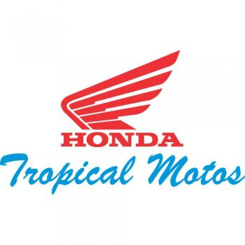 Honda Motos logo Light Iron On Stickers (Heat Transfers)