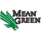 North Texas Mean Green 2005-Pres Alternate Logo1 Light Iron-on Stickers (Heat Transfers)