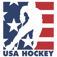 Hockey Team USA Primary Logo Light Iron-on Stickers (Heat Transfers) version 2