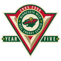 Minnesota Wild Anniversary Logo  Light Iron-on Stickers (Heat Transfers)