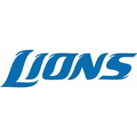 Detroit Lions Script Logo  Light Iron-on Stickers (Heat Transfers)