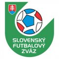 Slovakia Football Confederation Light Iron-on Stickers (Heat Transfers)