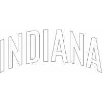 Indiana Pacers Script Logo  Light Iron-on Stickers (Heat Transfers) version 3